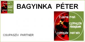 FP_CSP_BAGYINKA.PÉTER
